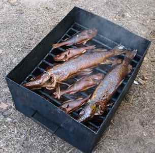 Как правильно коптить рыба в домашних условиях 94