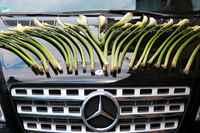 Ленты для украшения машины своими руками