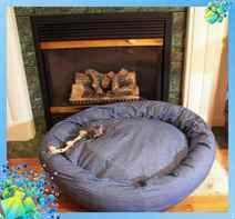 Лежак для собак своими руками пошаговая инструкция