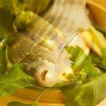 Рыбий жир это витамин
