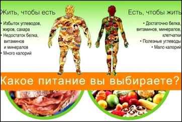 Упражнения для похудения живота в зале