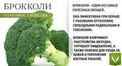 Капуста брокколи полезные свойства и противопоказания