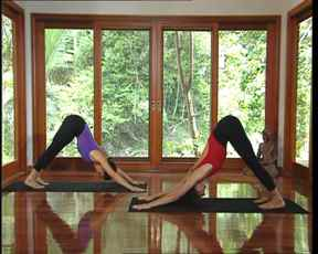 Видео занятия йогой онлайн в домашних условиях - курсы онлайн институт йоги