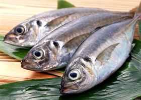Снится свежая что когда рыба