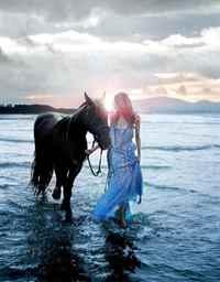 Во сне приснился лошадь к чему