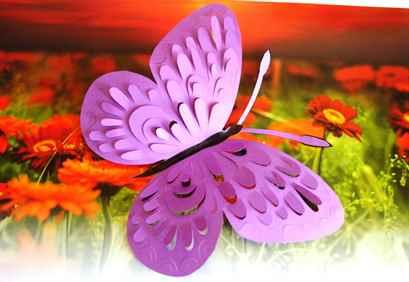 Бабочки картинки фото своими руками