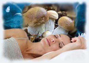 К чему снится беременной женщине собирать грибы