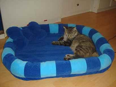 Лежанка для котенка своими руками мастер класс