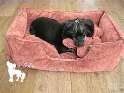 как сделать лежак для собаки из свитера видео