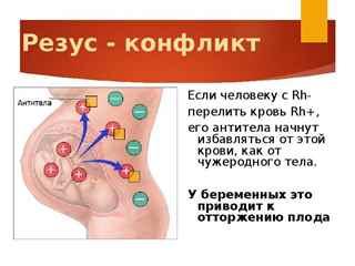Анализ крови на антитела при беременности: процедура и расшифровка