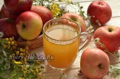 Яблочный сидр в домашних условиях простой 696
