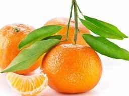 Цитрусовые полезны из-за витамина с / телеканал україна.